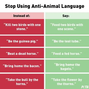 PETA Language Meme